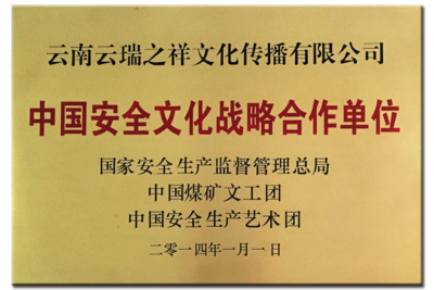 中国安全文化战略合作单位