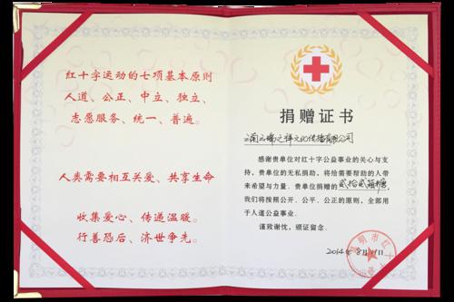 云南鲁甸地震捐资